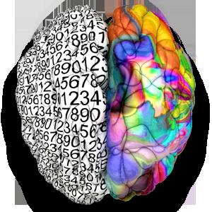 Neurofeedback Pro - Entrenamiento Cerebral